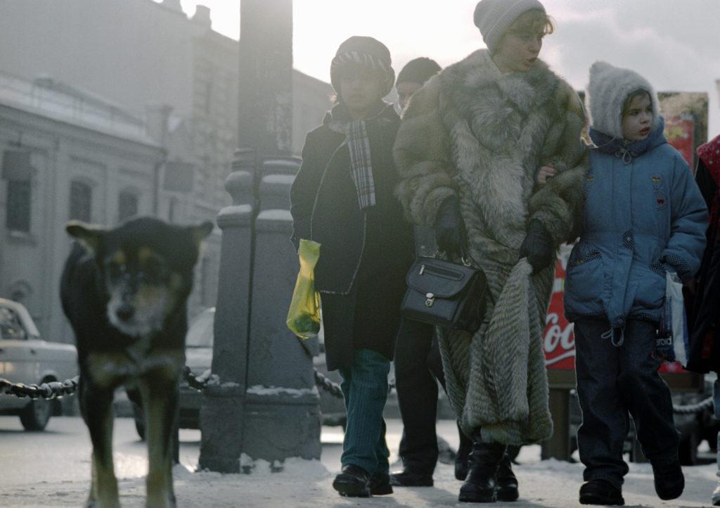 74916 19.01.2001 Бродячая собака на улице Москвы. Валерий Шустов/РИА Новости