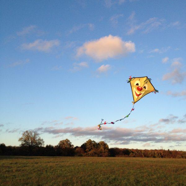 Den Herbstwind kann man gut nutzen, wenn man eine große Freifläche hat. / pixabay